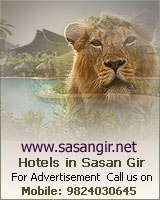 Sasan Gir - Premium Portal about Hotels in Sasan Gir
